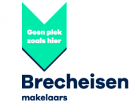 Company Logo Brecheisen