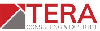 Company Logo Tera Consultants