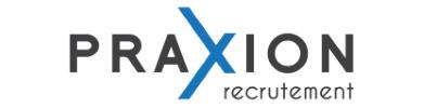 Company Logo Praxion
