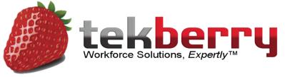 Company Logo Tekberry