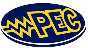 Professional Electrical Contractors logo
