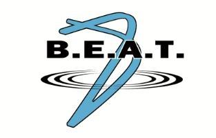 BEAT LLC logo