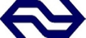 Company Logo NS