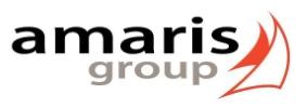 Company Logo AMARIS ENERGIE