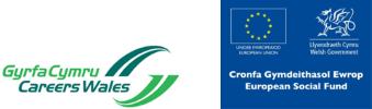 Company Logo CAREER CHOICES DEWIS GYRFA LTD.