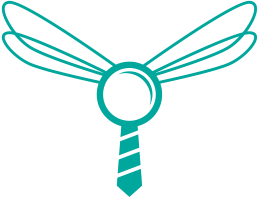 Dragonfly Staffing logo
