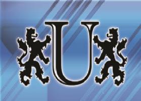 Unlimited Valet Parking Services, LLC logo
