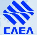 Company Logo CAEA Automotive Electronic Systems (USA) Inc