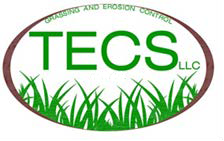 TECS LLC