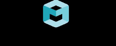Seeing Machines Inc logo