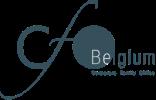 Company Logo CFO Belgium