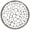 Company Logo Abiomis