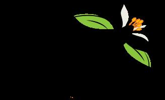 Orange Blossom, LLC logo