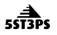 Company Logo 5ST3PS Lean Six Sigma