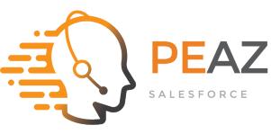 Company Logo PEAZ B.V.