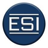 Company Logo ESI Works