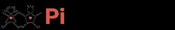 Company Logo Pi Academy Ltd