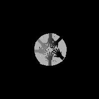 Moore & Moore Logistics, LLC logo