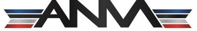 ANM Service LLC logo