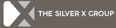 Company Logo The Silver X Group Limited