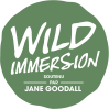Company Logo WILD IMMERSION SAS