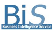 Company Logo Business Intelligence Service