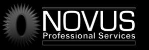 Company Logo NOVUS Professional Services, Inc.