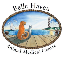 Belle Haven Animal Medical Centre logo