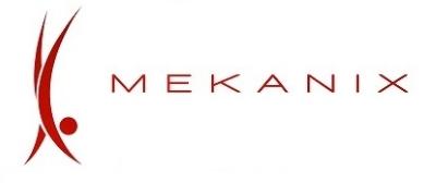 Company Logo Mekanix Houston