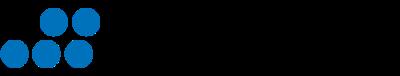 Noetic Strategies logo