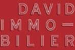 Groupe David Investissements