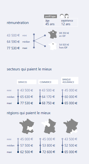 infographie Directeur de projets